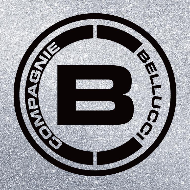 Création du logo et de la charte graphique.