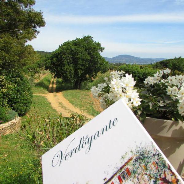 Ergologik - Création du nouveau site web du restaurant La Verdoyante